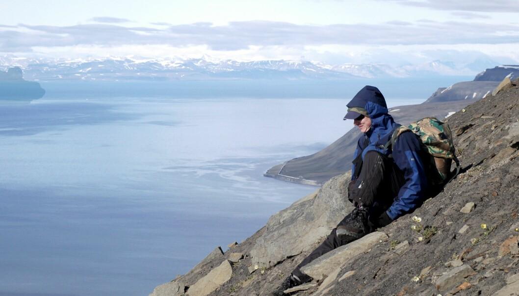 Forskarane finn store endringar i korleis det ser ut på fjelltoppane.  (Foto: John-Arvid Grytnes)