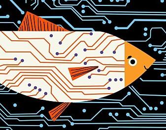 Bli med på en digital fisketur