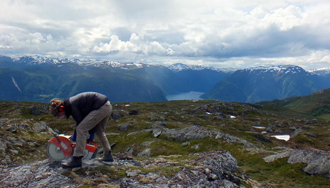 Forsker Jane Lund Andersen høyt oppe på et fjellplatå ved Sognefjorden. Hun mener at disse flatene også er blitt kraftig erodert gjennom istidene.  (Foto: Vivi K. Pedersen)