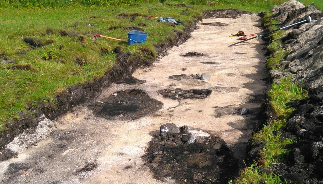 Arkeologer og forskere fant kokegroper og stolpehull på Rødskjær i Troms. De kombinerte da tradisjonelle utgravninger med geofysiske undersøkelser. (Foto: Manuel Gabler, NIKU)