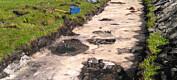 Arkeologer oppdaget nye funn i Hålogaland