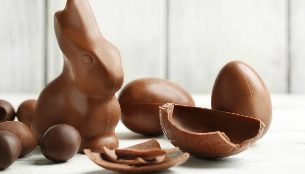Flere forskere går ut i avisen The Guardian og advarer mot å ta for alvorlig de mange små studiene som viser at sjokoladeegg og sjokoladeharepuser skal være bra for helsa. (Foto: Africa Studio / Shutterstock / NTB scanpix)