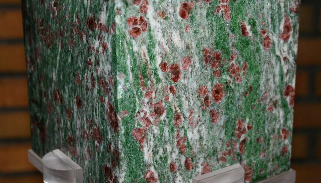 Er det verdens vakreste bergart? Eklogitt består av rød granat og grønn pyroksen. Denne polerte steinblokken er utstilt i inngangspartiet ved Norges geologiske undersøkelse. (Foto: Ane K. Engvik)