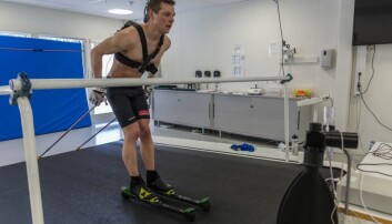 Daniel Strand trener mot et skiløp som er 22 mil langt. Tredemølla er god å ha når man skal rekke å trene 22 timer i uka. (Foto: Tommy Hansen)