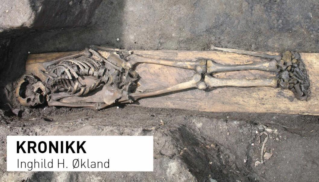 Et nesten komplett skjelett, 800-900 år gammelt, ble funnet bevart i en kiste i Klemenskirken i Trondheim. (Foto: NIKU)