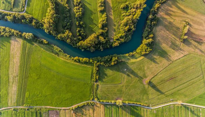 Nitrogen flyter fra jordene og ut i elver og vannløp, og videre ut i Østersjøen. Nitrogenet gir næring til alger som kan ta opp alt oksygenet i havet.  (Foto: Bizi88 / Shutterstock / NTB scanpix)