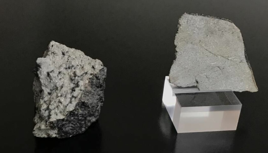 En rekke steiner fra rommet, inkludert disse to Mars-meteorittene fra Statens Naturhistoriske Museum i København, er hovedpersoner i en ny studie som kan fortelle mer om hvordan planeter blir til.  (Foto: Martin Schiller)