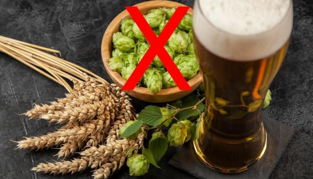 Øl med humlesmak fra gjær blir mer miljøvennlig enn tradisjonelt øl.  (Foto: George Dolgikh / Shutterstock / NTB scanpix / H. Bendix)