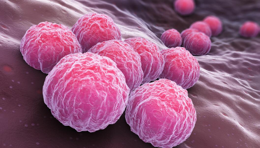 At det er flest kvinner som får diagnosen klamydia, kan skyldes at flere kvinner tester seg. (Illustrasjonsfoto: Tatiana Shepeleva, Shutterstock, NTB scanpix)