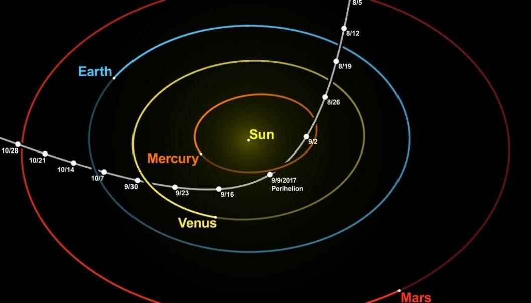 Slik var Oumuamuas bane rundt solen. Den kom inn øverst i bildet langs den hvite linjen, og gikk ut til venstre i bildet. Bildet er laget basert på data fra JPL Horizons. (Bilde: nagualdesign; Tomruen/CC BY-SA 4.0)