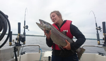 Chloé Nater har studert veksten til hunderørreten, som er den største av storørretstammene i Mjøsa. Ungfisk som lever i Gudbrandsdalslågen hadde en 12 prosent lavere vekstrate på 2000-tallet enn på 1970-tallet.  (Foto: Atle Rustadbakken)