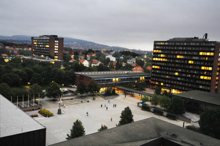 Universitetet i Oslo, campus Blindern. Stedsnavnforskerne har kontorer litt utenfor området. De er bekymret for fagfremtiden. (Foto: Ola Sæther) (Foto: Ola Sæther)