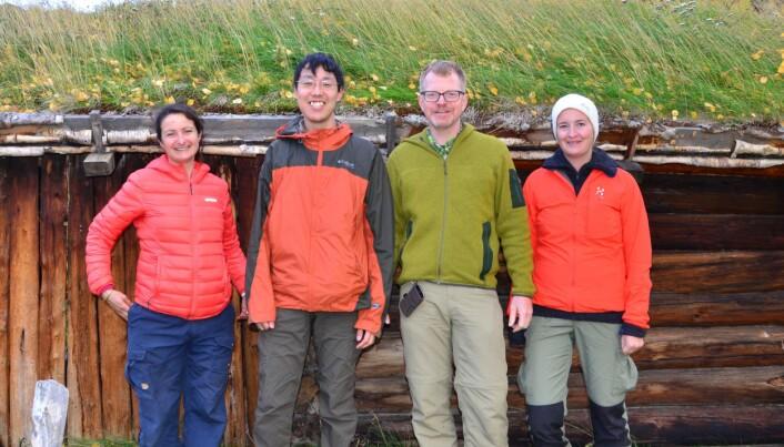 Forskerne i feltarbeid i regi av Artsdatabanken, i Dividalen høsten 2015. Fra venstre: Amandine Deschamps (botaniker), Yudai Okuyama, Jostein Kjærandsen, Trude Magnussen (PhD-stipendiat NHMO). (Foto: privat)