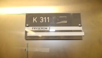Forskeren brukte dette fryserommet for å gjennomføre eksperimentet. (Foto: Siri Birkeland / UiO)