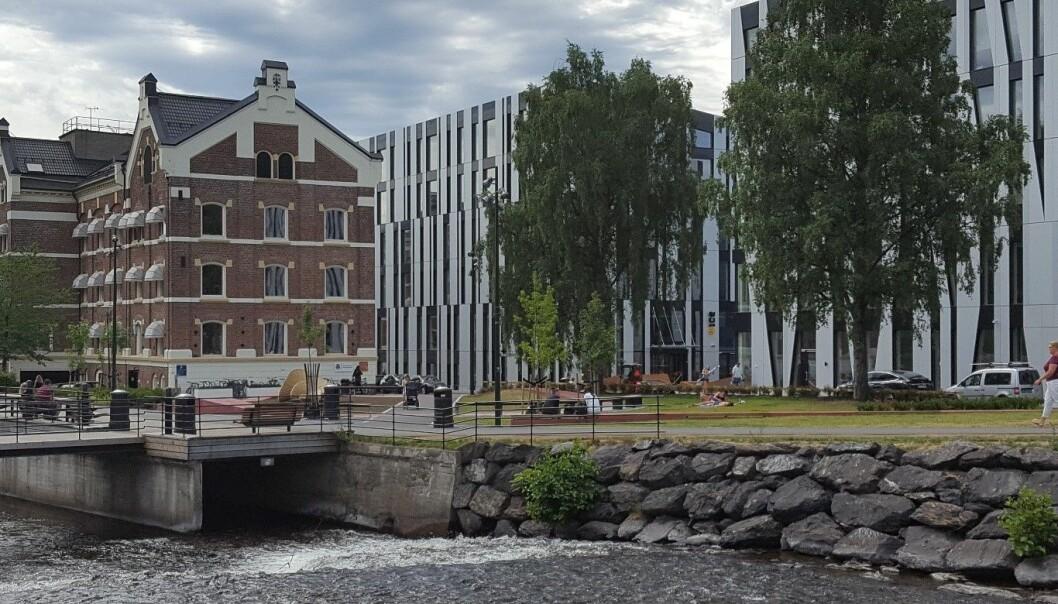 Nydalen er ett av mange fortettingsområder i Oslo. Her sameksisterer flere av de gamle industribygningene med moderne strukturer med stor arealutnyttelse. (Foto: NIKU)