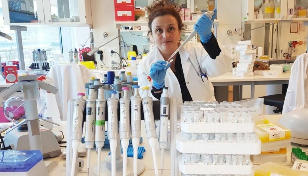 UiO-professor Vessela Kristensen er tildelt Kong Olav Vs kreftforskningspris for 2018. (Foto: Daniel Nebdal, OUS)