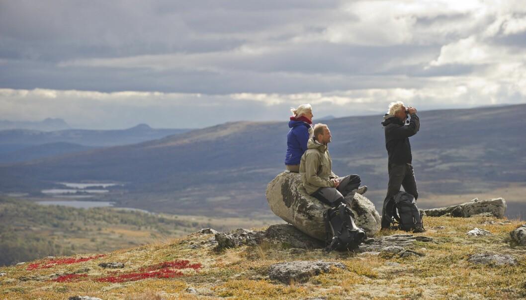 Turister i Rondane. (Foto: CH - visitnorway.com)