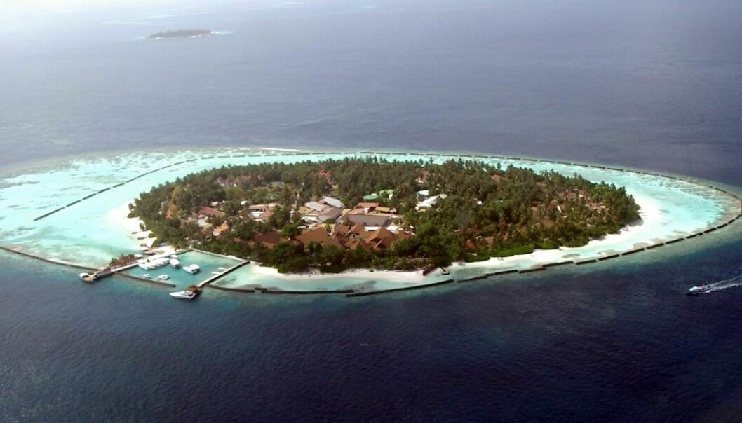 En øy i Maldivene med et tydelig korallrev rundt. (Foto: PalawanOz)
