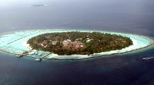 Korallrev bryter bølger