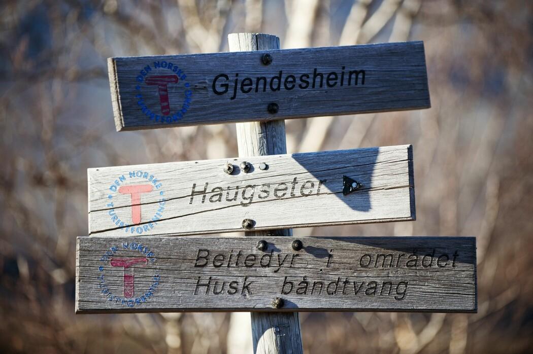 (Foto: Terje Rakke / Nordic Life AS / Visitnorway.com)