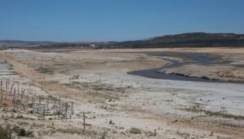 Dette er Theewaterskloof-demningen, en av de største i systemet som leverer drikkevann til Cape Town. Bildet er tatt 27. februar, og egentlig burde trærne til venstre i bildet være dekket av vann.  (Foto: REX, Shutterstock, NTB Scanpix)