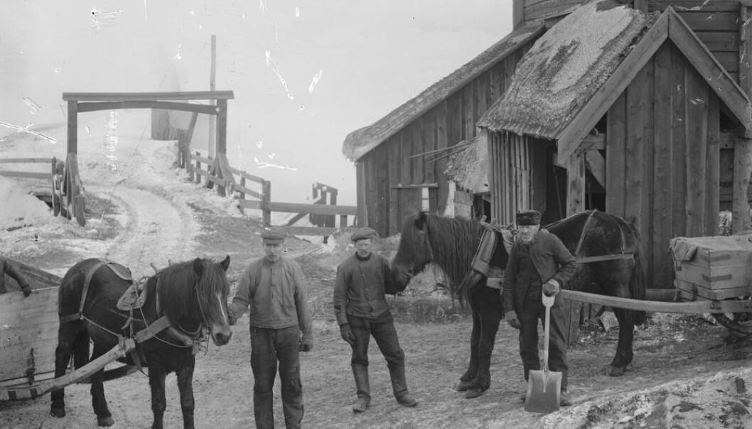 Malmkjørere kjørte kobberet med hest og vogn fra Røros til Trondheim om sommeren og med slede på vinteren. Kobberet som ble tatt ut og smeltet i bergstaden dro ofte langt ut i verden. Nå vet vi litt mer om hva det ble brukt til.  (Foto: Rørosmuseet/DigitaltMuseum)