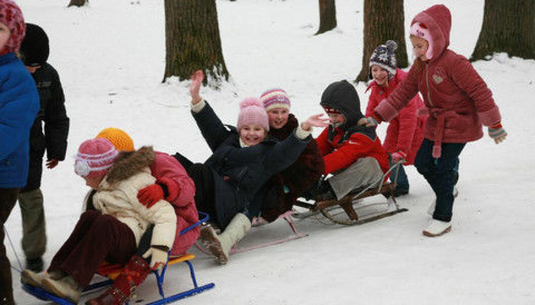 Høytid for skidag, men hva skal vi med dem?