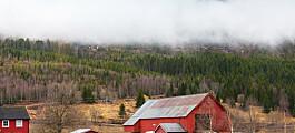 Norske bønder tør ikke satse på klima