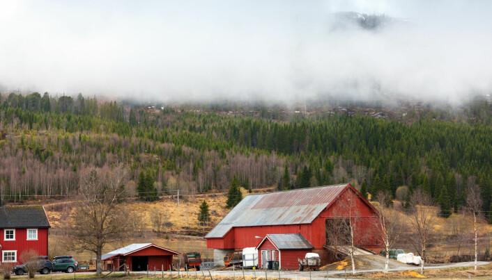 En ny undersøkelse viser at bønder ikke nødvendigvis er skeptiske til klimaendringer, men heller skeptiske til klimatiltakene de oppfordres til å gjennomføre.  (Illustrasjonsfoto: Shutterstock / NTB Scanpix)