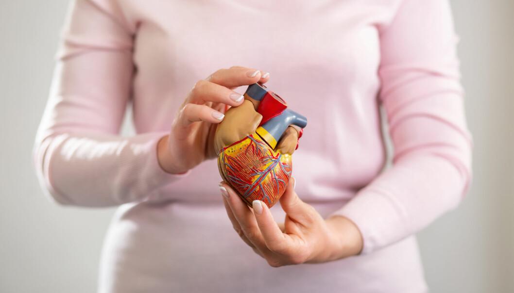 – Vi vet at fedme, røyking, diabetes og høyt blodtrykk påvirker hjertet og karsystemene mer hos kvinner enn menn, forteller professor i hjertemedisin.  Likevel har ikke de nyeste nasjonale retningslinjene tatt hensyn til dette, mener hun. (Illustrasjonsfoto: Shutterstock / NTB Scanpix)