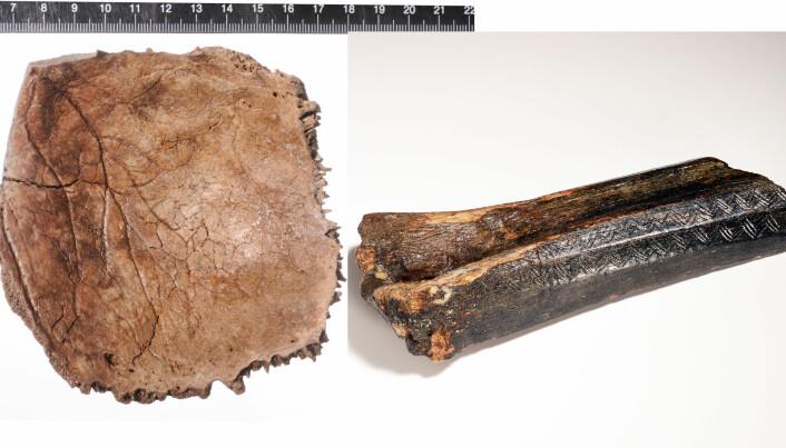 11 000 år gamle knokler funnet på bunnen av Nordsjøen