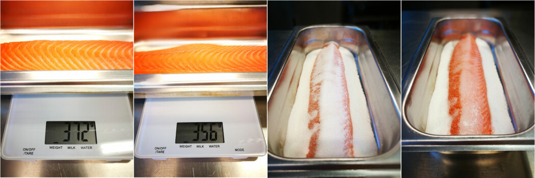 <b>Før og etter salting:</b> Saltet (og sukkeret) trekker ut vann fra fisken, noe som virker konserverende og gir kjøttet en fastere konsistens. Denne fileten på 372 gram mistet 16 gram vann i løpet av tørrsaltingen på 30 minutter. (Foto: Guro Helgesdotter Rognså)