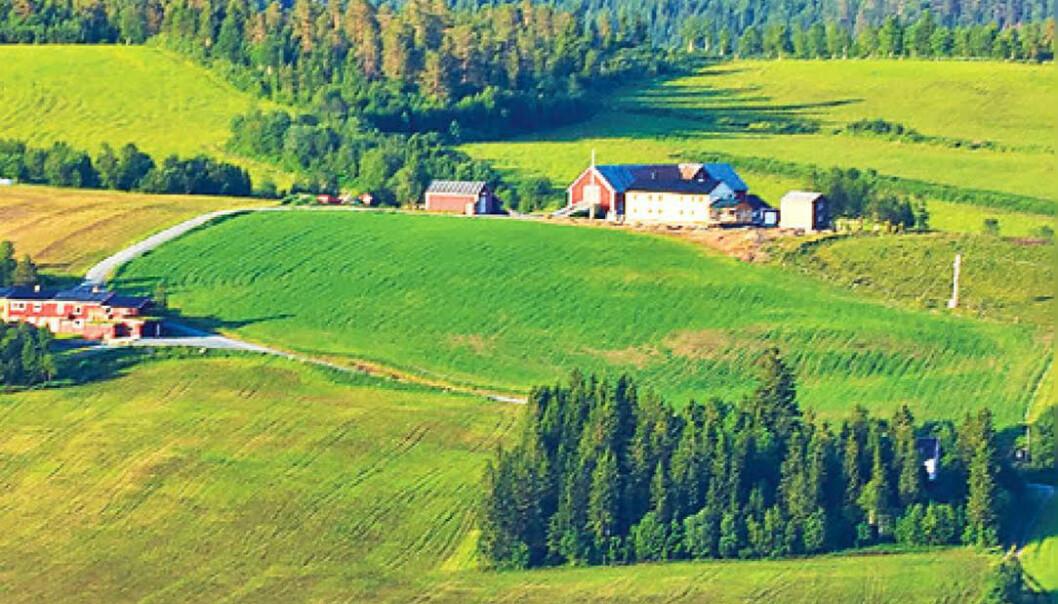 Landbrukets folk må delta i klimadugnaden og sjå klimaendringane som ein sjanse til å koma på offensiven i kampen om å forme framtida, meiner professor. (Foto: henta frå framsida av boka Klimasmart landbruk - Korleis kan norsk landbruk bidra til det grøne skiftet?)