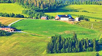 Korleis kan norsk landbruk bidra til det grøne skiftet?