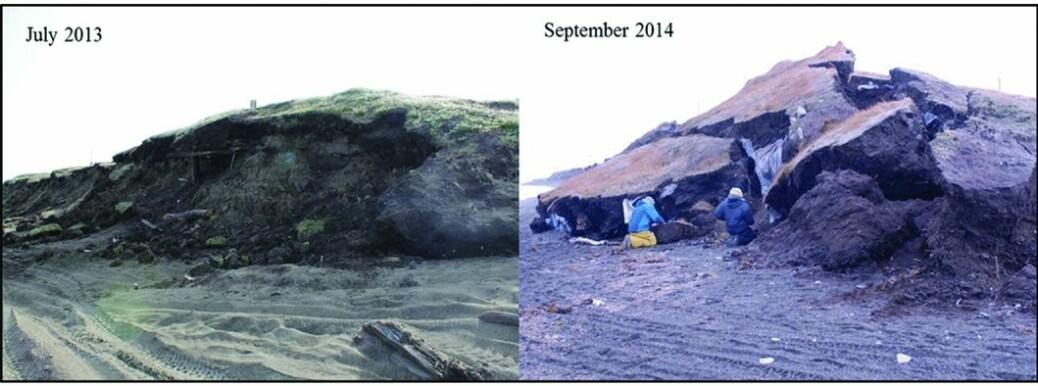 Eksempler fra Alaska, hvor arkeologiske lag forringes kraftig fra ett år til et annet. Årsakene er tinende permafrost, forråtnelse og påkjenninger fra bølger under stormer. (Foto: A. Jensen / fra artikkelen)