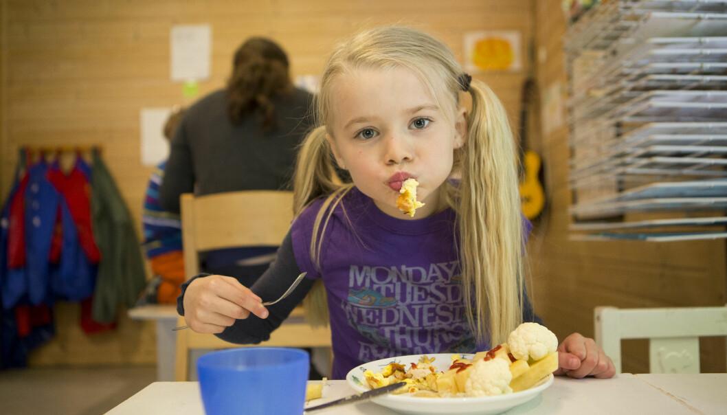 Forskerne fulgte barnehagebarn som spiste fisk til lunsj tre ganger i uken. (Foto: Emil Breistein/ Havforskningsinstituttet)
