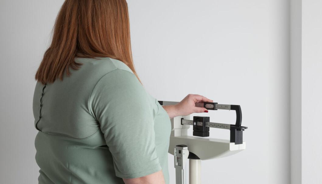 En ny studie viser at høy BMI ikke påvirker nyrene. Det gjør derimot metabolsk syndrom, altså forandringer som inkluderer høyt blodtrykk, høye insulinverdier og høye kolesterolverdier i kombinasjon med overvekt. (Illustrasjonsfoto: Shutterstock / NTB Scanpix)