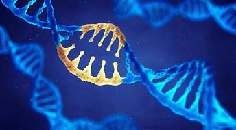 Forskere har gen-redigert bort årsaken til arvelig utviklingshemning