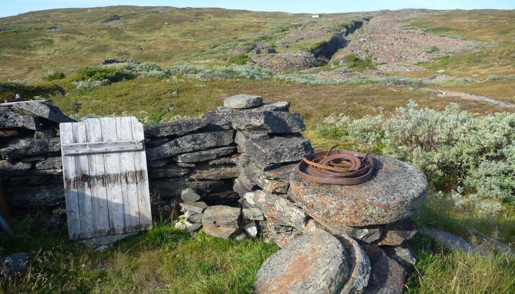 Emner av runde kvernstein hogd ut i granat-rike glimmerskifre. I bakgrunnen sees det historiske bruddet i Kvernfjellet øst for Selbu. (Foto: Ane K. Engvik)
