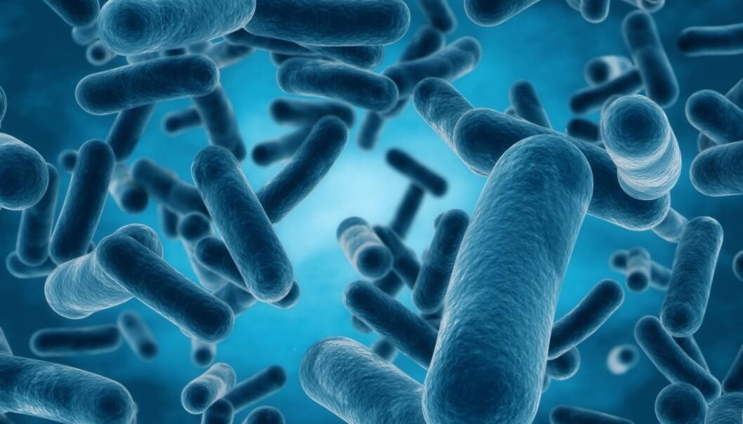 - I fremtiden kommer vi til å høre mye om bakterieblærer. Det pågår allerede forskning for å benytte de som vaksiner imot en rekke sykdommer, for eksempel hjernehinnebetennelse, og de har blitt prøvd ut som transport-kontainere for å levere kjemiske substanser direkte inn til kreftceller slik at disse dør, skriver Magnus Ø. Arntzen. (Illustrasjon: Shutterstock / NTB scanpix)