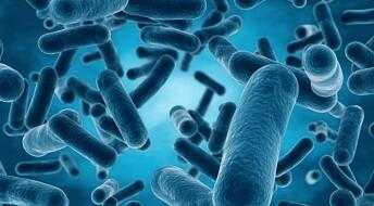 Kan vi bruke bakterienes egne triks for å bekjempe sykdom?
