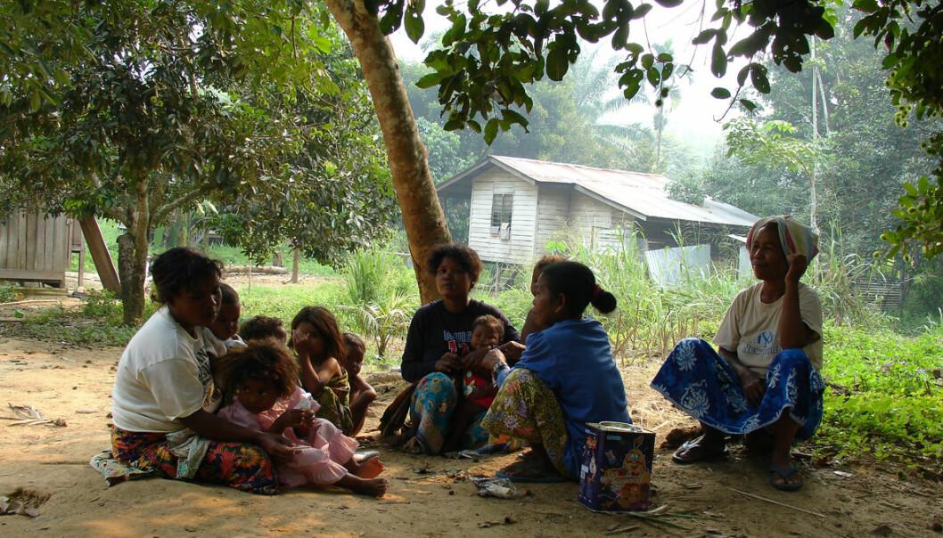 En liten gruppe snakker jedek i Malaysia. (Foto: Niclas Burenhult)