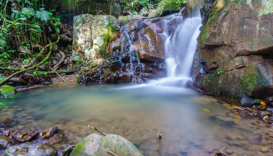 Alt livet på jorden krever vann, men i vann ville de første biologiske molekylene ha hatt problemer med å finne sammen.  (Foto: Yusnizam Yusof / Shutterstock / NTB scanpix)