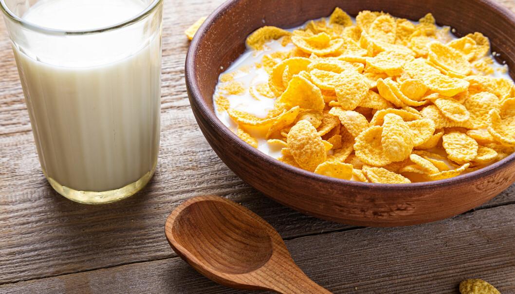 - Dannelsen av det «djevelske» proteinet fra A1-melk ble antatt å være årsaken til den økte forekomsten av diabetes, skriver Tora Asledottir. (Foto: Shutterstock / NTB scanpix)