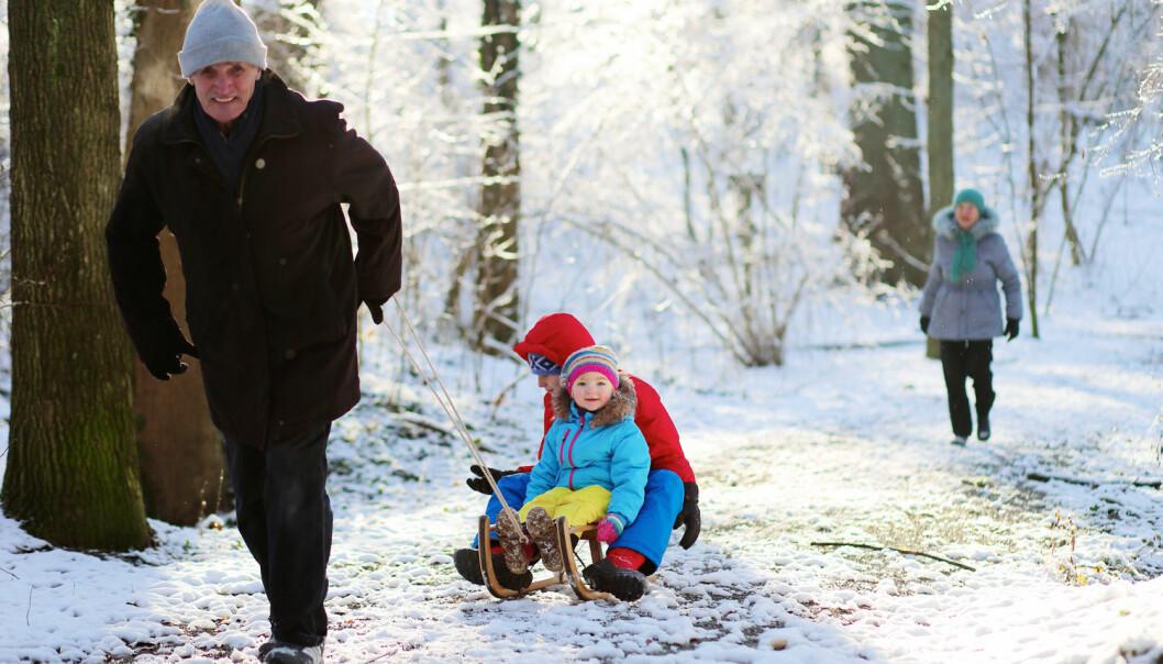 Ei form for frivillig innsats blant eldre er å passe barnebarna. Men må slike aktivitetar vike for lønna arbeid?  (Illustrasjonsfoto: Shutterstock / NTB Scanpix)