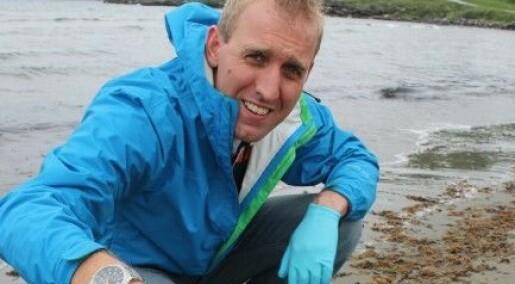 Glupske krabber og slimål mesker seg i døde maneter