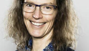 Noen insekter overlever kulda fordi de lager frostvæske, skriver insekt-professor Anne Sverdrup-Thygeson.