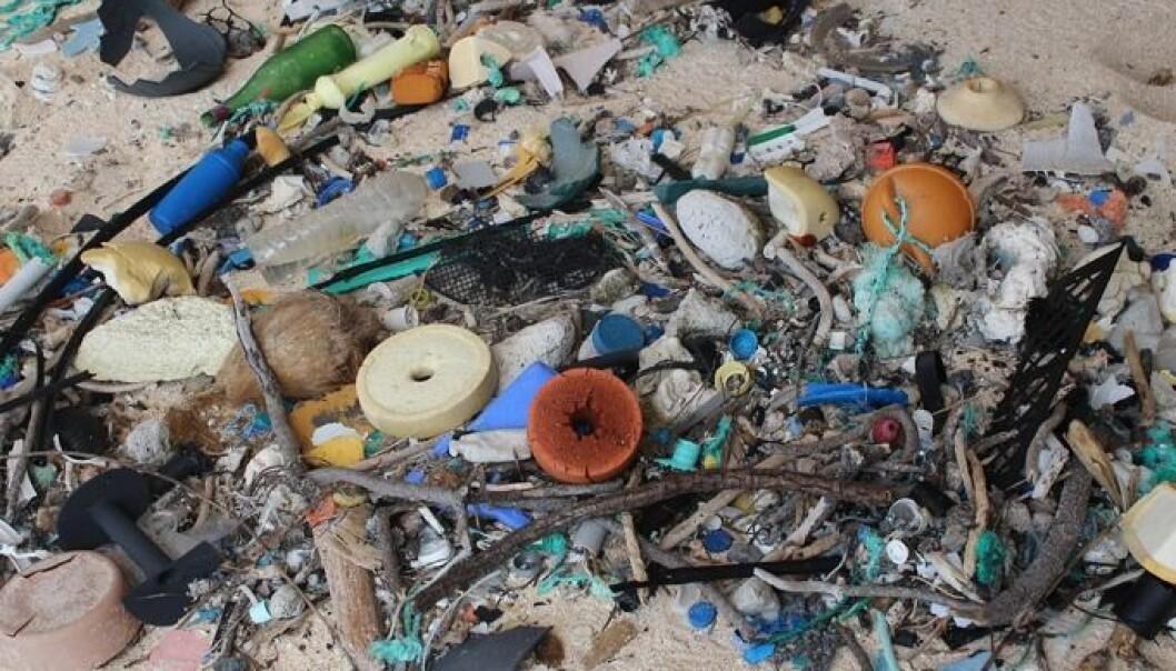 Så mye plast er det på strendene
