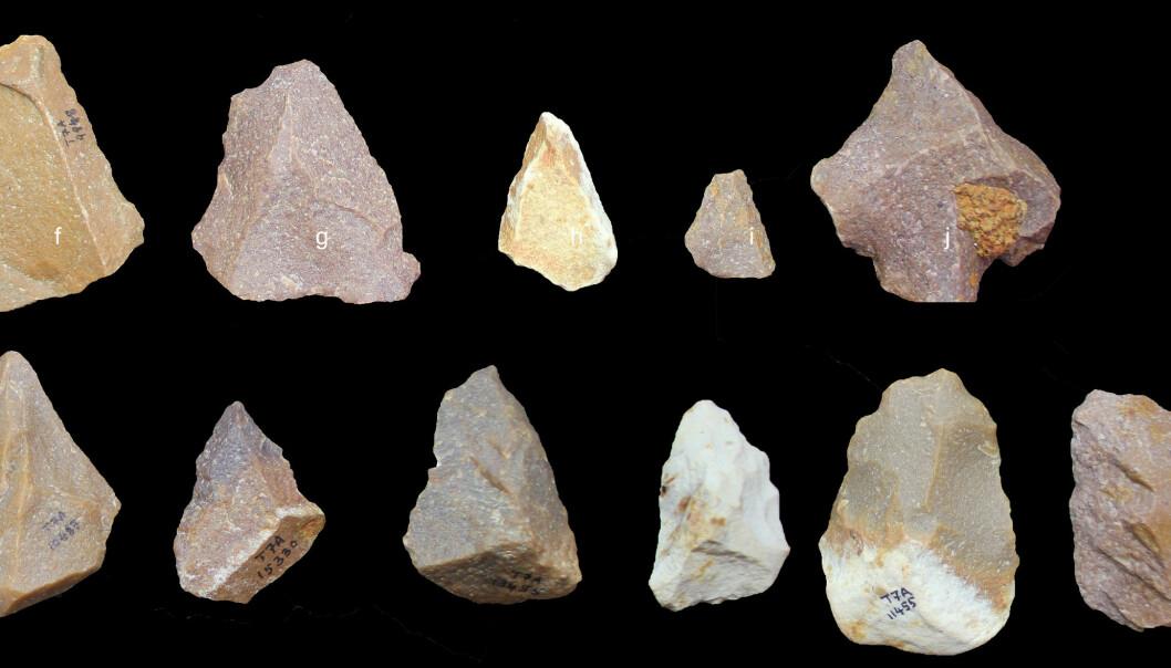 Disse verktøyene har blitt laget med Levallois-teknikken, ifølge en artikkel i Nature.  (Bilde: Sharma Centre for Heritage Education, India)