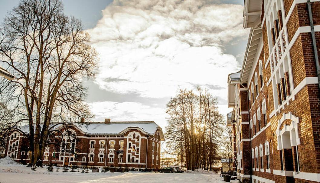 Campus Ås, NMBU, hadde skrivekurs for forskere i januar. Gisle Bjørneby